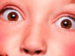 Papilles & Pupilles 2009
